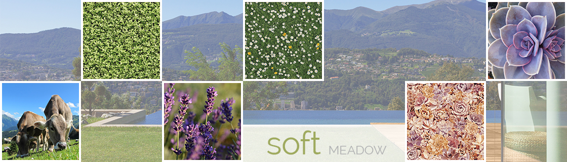 SOFT MEADOW w text